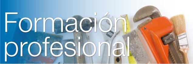 Especial Formación Profesional 2012